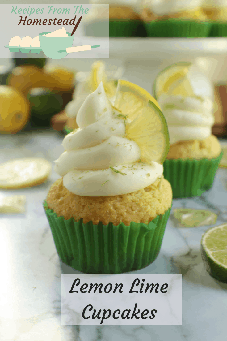 Sweet, with just a bit of tangy flavor, these lemon lime cupcakes are tender, tasty and festive!