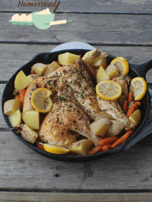 Need a dinner that is easy enough for weeknights, but fancy enough for weekends? This lemon pepper chicken will fit the bill!