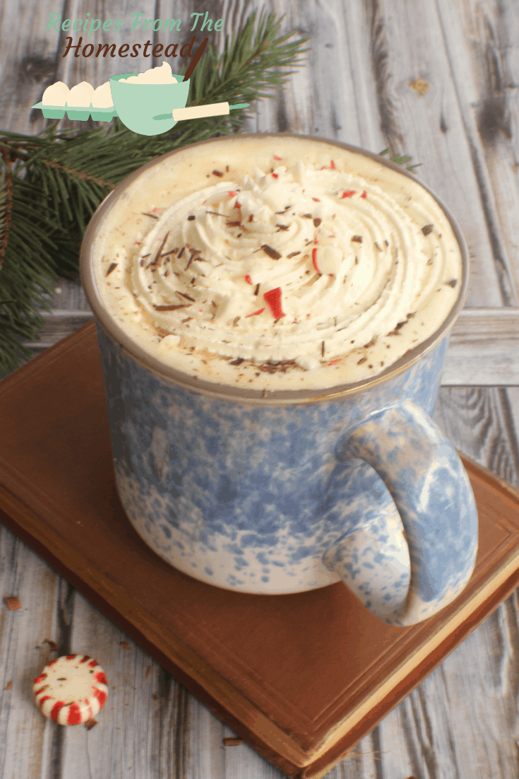 Enjoy the minty fresh flavors of this decadent, rich, peppermint mocha any time of year!
