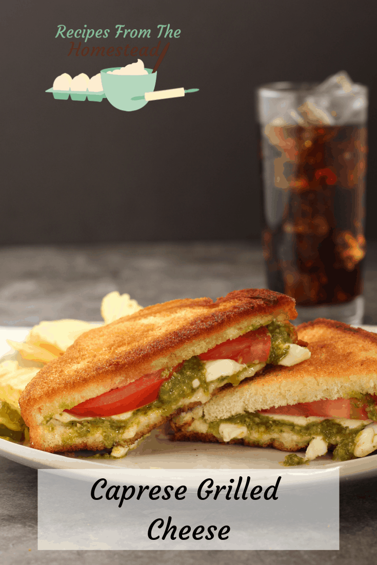 caprese grilled cheese on white plate with beverage