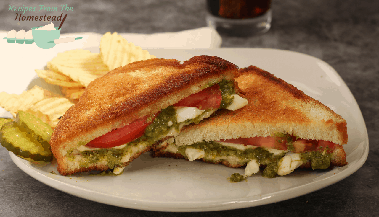 caprese grilled cheese on white plate with chips and pickles