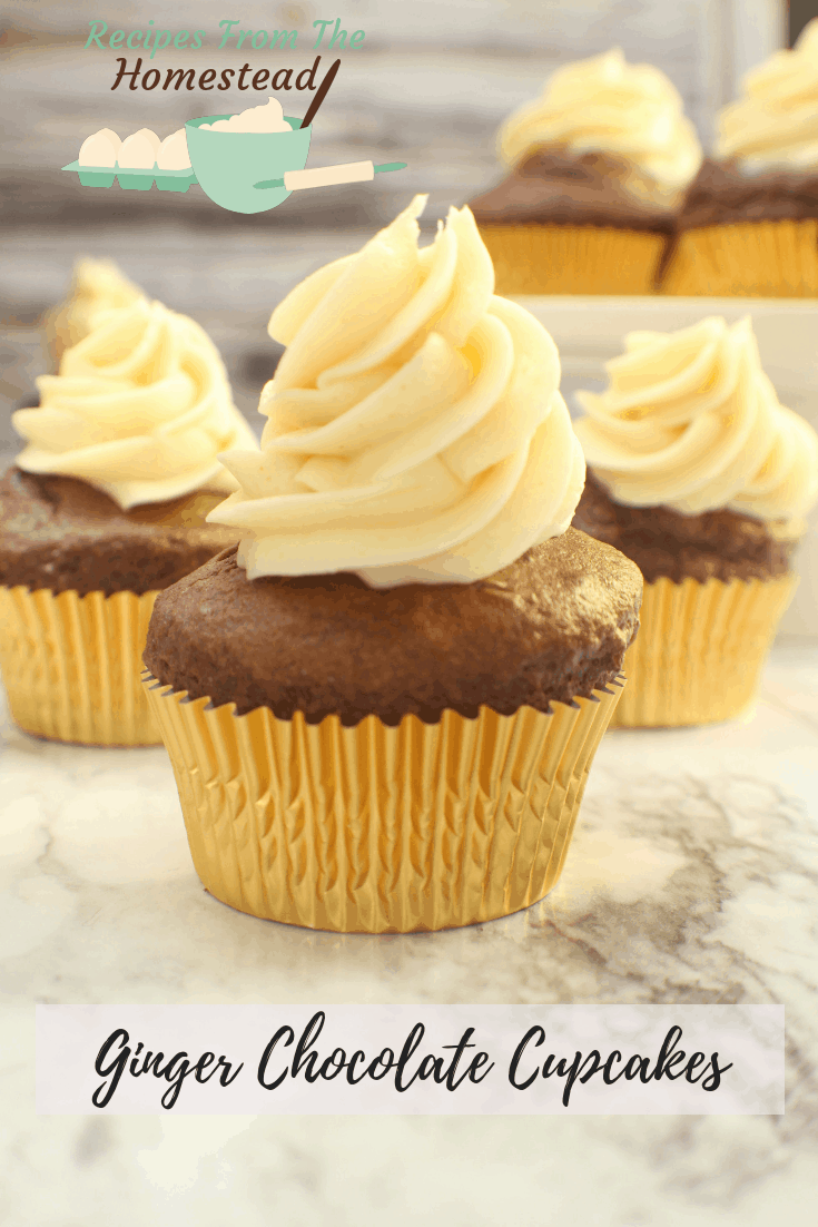 ginger chocolate cupcakes