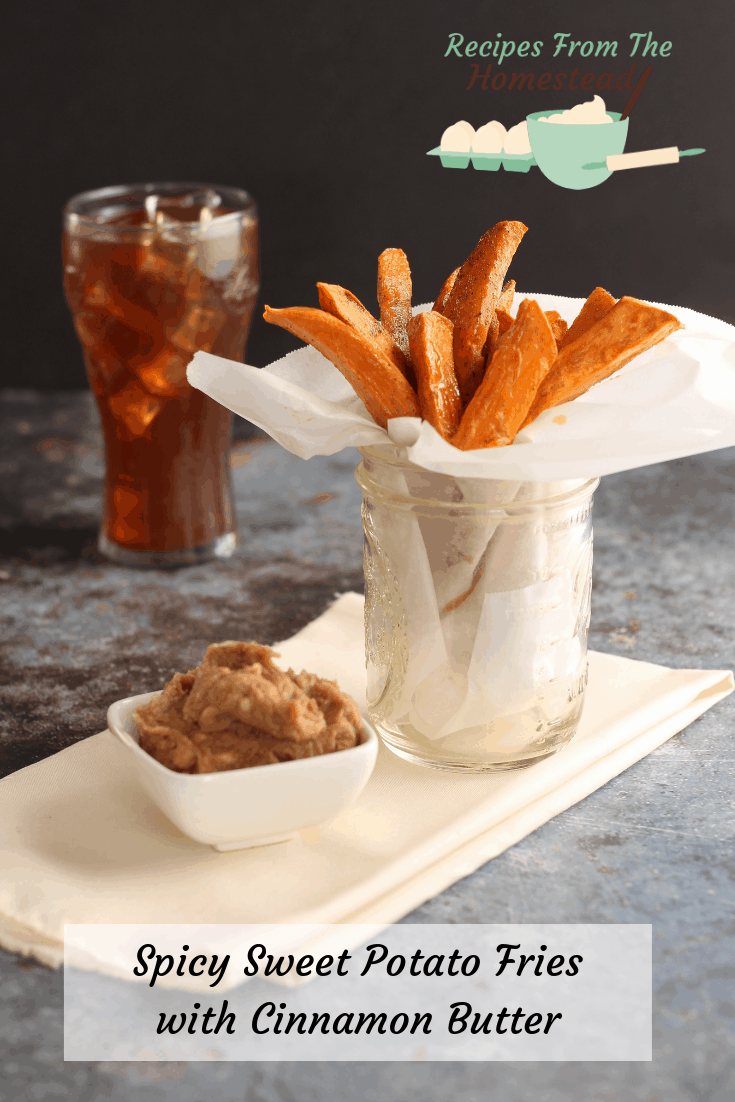 sweet potato fries with cinnamon butter and coke in back