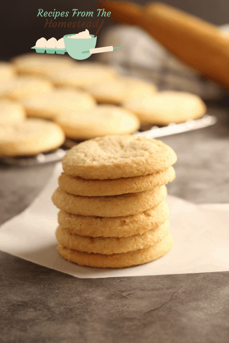 stack of freshly baked sugar cookies