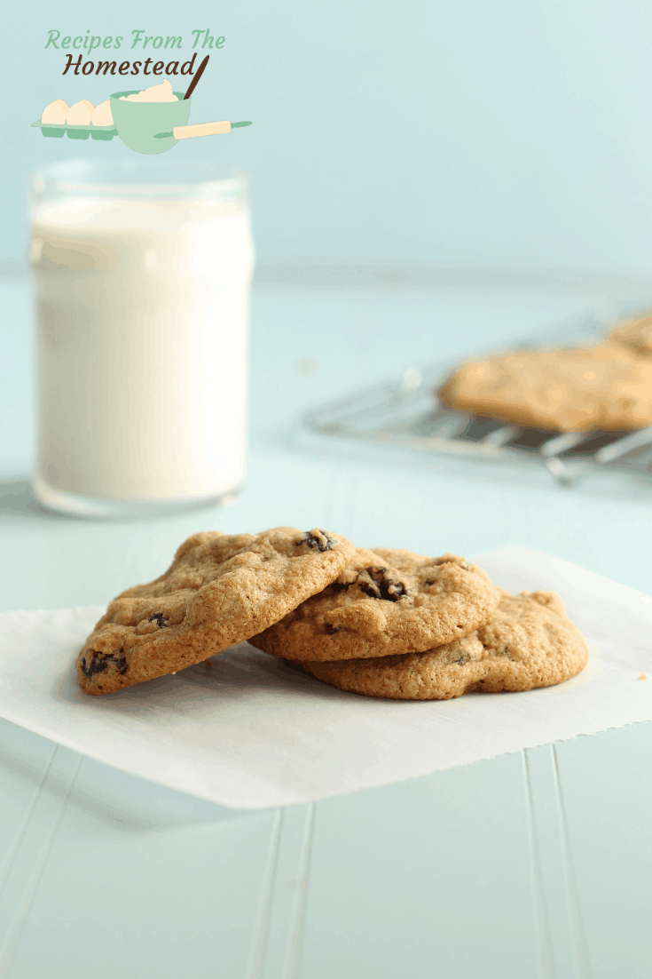 easy gluten free oatmeal cookies on parchment paper