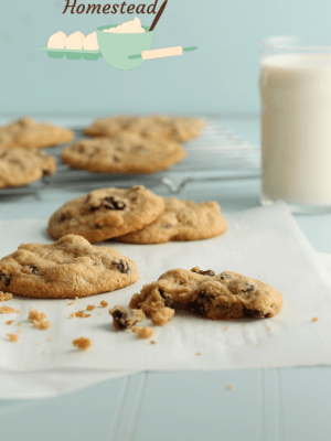 oatmeal raisin cookies with glass of milk