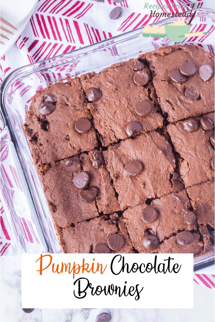 pumpkin chocolate brownies in pan