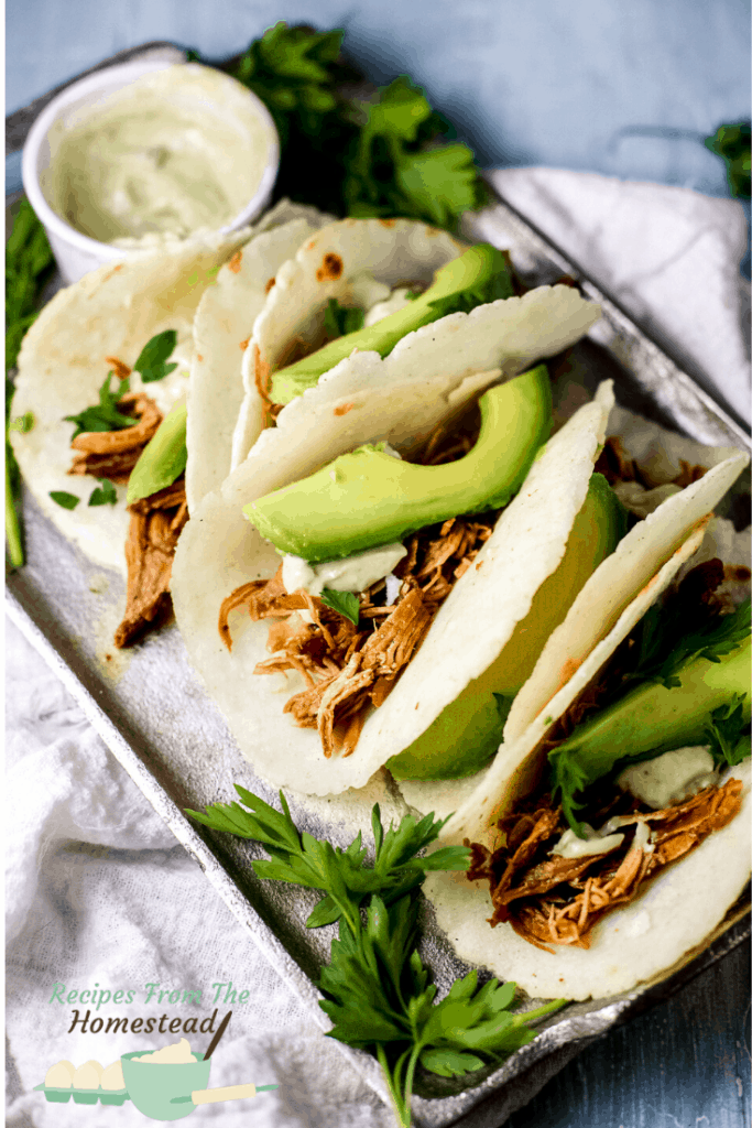 bbq pulled chicken tacos on baking sheet