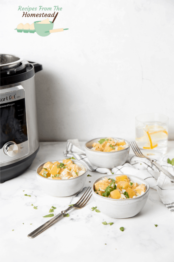 Hawaiian chicken and Instant Pot in background
